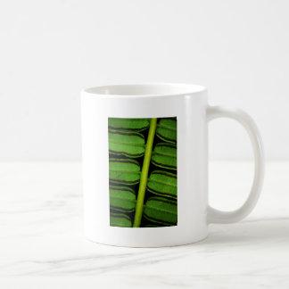 Hawaii-Farn Kaffeetasse