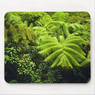 Hawaii, große Insel, üppiges tropisches Grün in 2 Mousepad