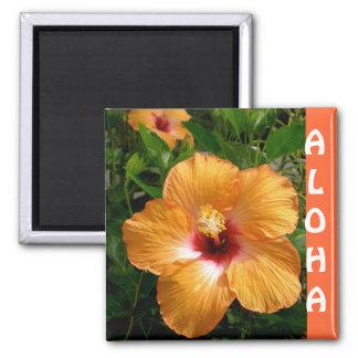 Hawaii-Hibiskus Aloha Quadratischer Magnet
