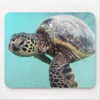 Hawaii-Meeresschildkröte Mauspad