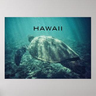HAWAII-MEERESSCHILDKRÖTE-PLAKAT POSTER