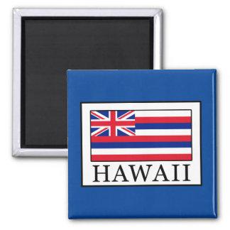 Hawaii Quadratischer Magnet