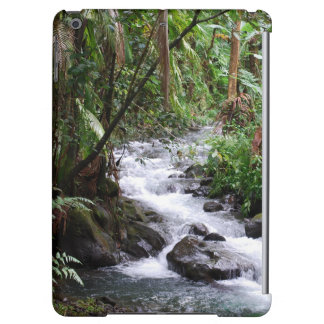 Hawaii-Regenwald