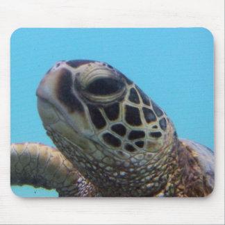 Hawaii-Schildkröte Mousepads