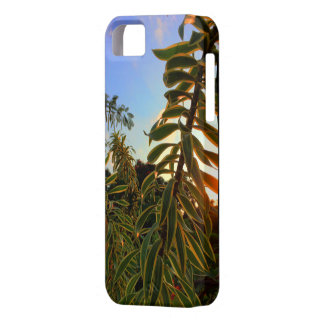 Hawaii-Sonne-Sets hinter Lied von Indien iPhone 5 Etui