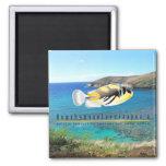 Hawaii-Staats-Fische - Humuhumunukunukuapua'a. Magnets