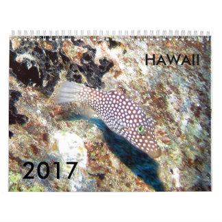 Hawaii Unterwasser -- Kalender 2017