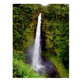 Hawaii-Wasserfall Akaka Fälle Postkarten