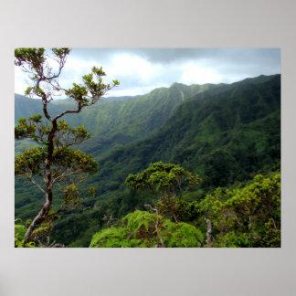 Hawaiische Koolau Berge Poster