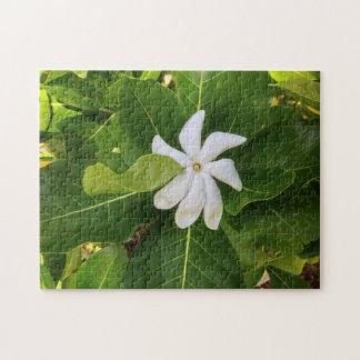 Hawaiische Pikake Jasmin-Blüte Puzzle