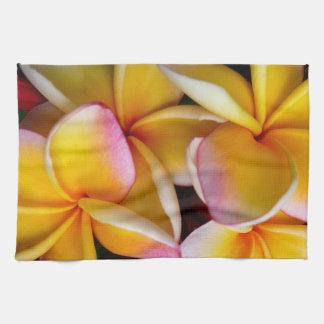 Hawaiischer Frangipani Handtücher
