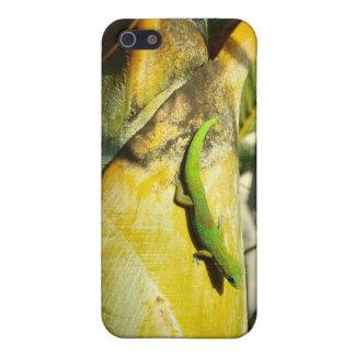 Hawaiischer Gecko iphone vier Fall iPhone 5 Cover