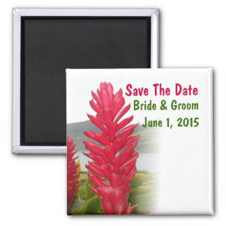 Hawaiischer roter Ingwer-Save the Date Magnet Quadratischer Magnet