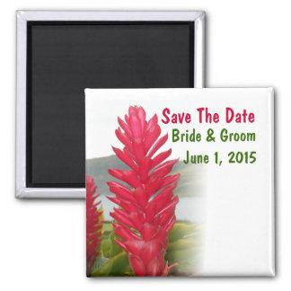 Hawaiischer roter Ingwer-Save the Date Magnet Quadratischer Magnet