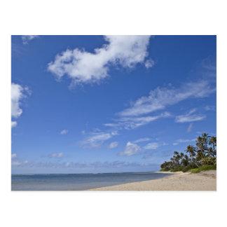 Hawaiischer Strand mit Palmen Postkarte