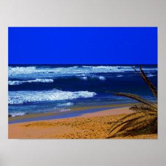 Hawaiischer tropischer Strand Sandys Poster