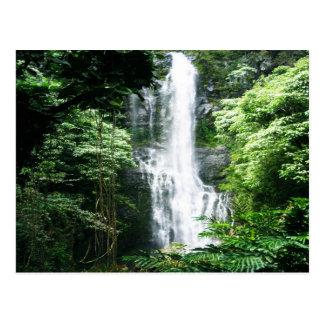 Hawaiischer Wasserfall Postkarte
