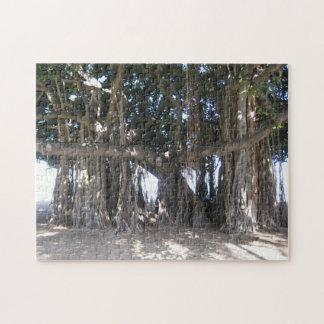 Hawaiisches Banyanbaum-Puzzlespiel Puzzle