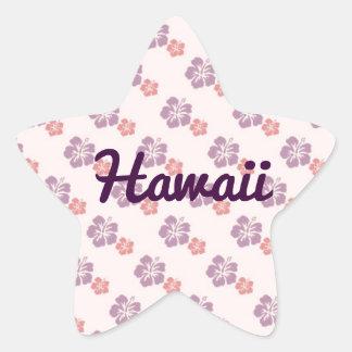 25 einzigartige Vintage hawaiian