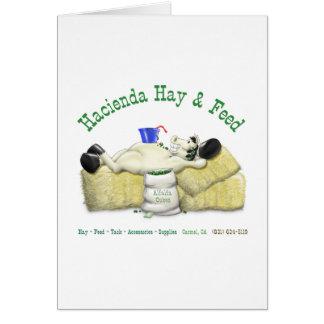 Hazienda-Heu u. füttert entspanntes Pferd Grußkarte
