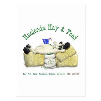 Hazienda-Heu u. füttert entspanntes Pferd Postkarte