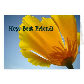 He bester Freund! Karten orange Mohnblumen-Blumen-