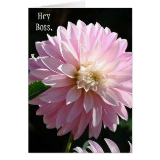 He kardiert Chef rosa Dahlie-Blumen-Chefs Grußkarte