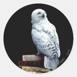 Hedwig auf Büchern Aufkleber