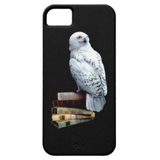 Hedwig auf Büchern iPhone 5 Etuis