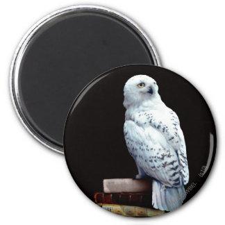 Hedwig auf Büchern Runder Magnet 5,7 Cm