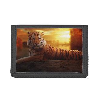 Heftige Tiger-Geldbörse