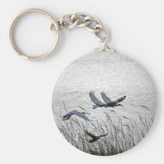 Heilige Ibises im Flug Schlüsselanhänger