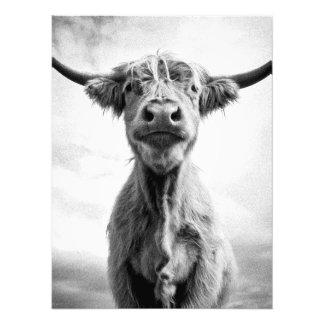 Heilige Kuh Mesotint Art-Kunst-Fotografie