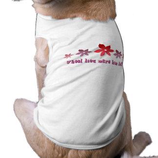 Heiraten Sie mich Ärmelfreies Hunde-Shirt