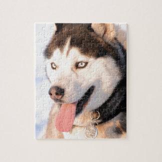 Heiserer Hund Puzzle