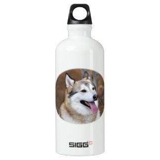 Heiserer Typ! Aluminiumwasserflasche