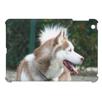 Heiseres Hundipad Minifall iPad Mini Hülle