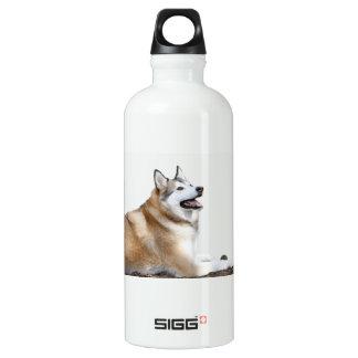 Heiseres Stillstehen Wasserflasche