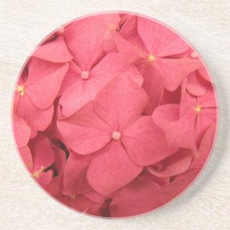 Heiße korallenrote rosa Hydrangeas Sandstein Untersetzer
