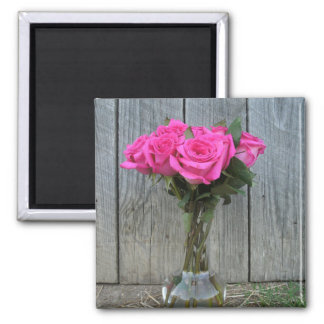 Heißes Rosa-Rosen-Blumenstrauß an der Scheune Quadratischer Magnet