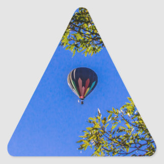 Heißluft-Ballon 2 Dreieckiger Aufkleber