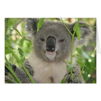 Helaines Koala-Bär Karte