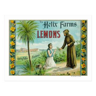 Helix bewirtschaftet Zitrone LabelSan Diego, CA Postkarte