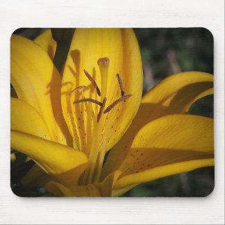 Hell als Sonnenschein-Gelb-Lilie Mousepad