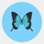 Helle blaue u. schwarze runder aufkleber