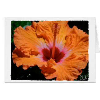 Helle orange Hibiskus-Blume/Blumenkunst Karte