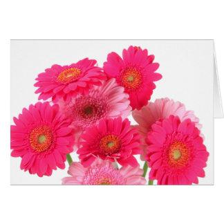 Helle rosa Gerbera-Gänseblümchen Karte