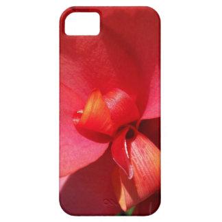 helle rote Blumenblätter iPhone 5 Case