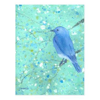 Helle und empfindliche Drossel Postkarte