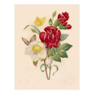 Hellebores und Gartennelken durch Pierre-Joseph Postkarten